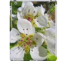 Peach blossom iPad Case/Skin