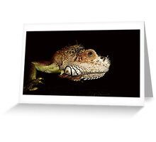 Lizard in the shadows Greeting Card