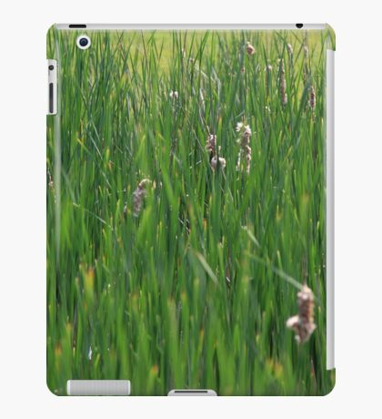 Spring Bulrush stems. iPad Case/Skin