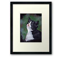 Tuxedo Cat Looking Up: Kitten: Oil Pastel Painting Framed Print