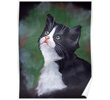 Cat Looking Up: Kitten: Oil Pastel Painting Poster