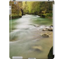 Shining springtime iPad Case/Skin