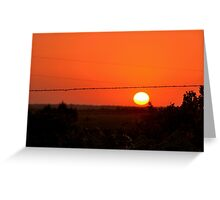 Barbed Wire at Sunset Greeting Card