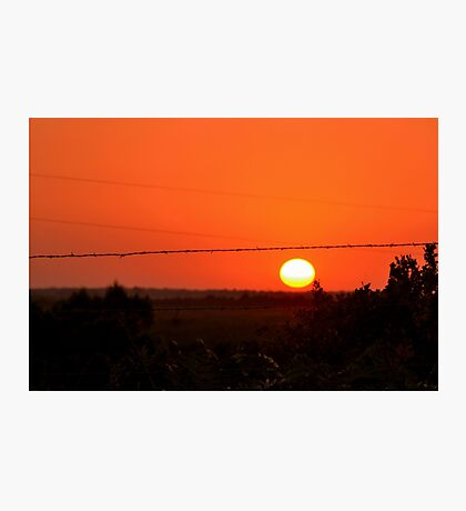 Barbed Wire at Sunset Photographic Print