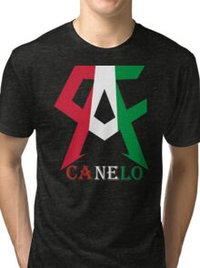 TEAM CANELO ALVARES BOXING MEXICO SAUL CANELO ALVAREZ Tri-blend T-Shirt