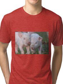 Cute Piglets Poster for Vegans/Vegetarians Tri-blend T-Shirt