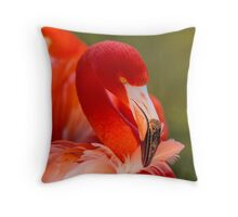 Caribbean Flamingo in the Pink Throw Pillow