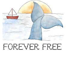 'Forever Free' Original Hand Painted Whale Print Photographic Print