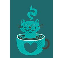 Cat in a Cup Photographic Print