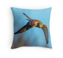 Hunting Kestrel Throw Pillow