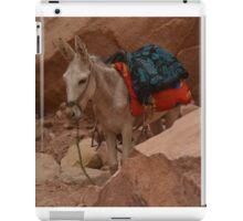 Little Donkey iPad Case/Skin