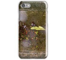 Canvas Collection iPhone Case/Skin