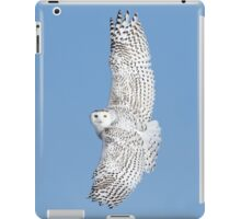 Flight of the goddess iPad Case/Skin