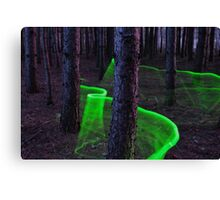 Green Trail Lightpaint Canvas Print