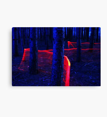 Red Trail Lightpaint Canvas Print