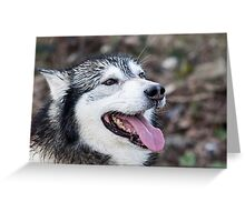 Wolf Dog Greeting Card