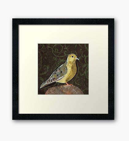 Mourning Dove Framed Print