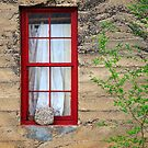 Rock On A Red Window by James Eddy