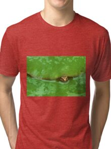 frog and lily pad Tri-blend T-Shirt