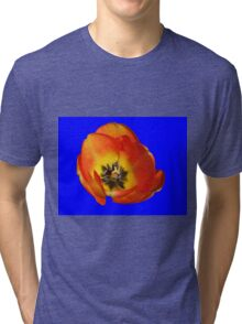 Orange and Yellow Tulip on Blue Background Tri-blend T-Shirt