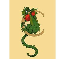 """Oscar and the Roses """"C"""" (Illustrated Alphabet) Photographic Print"""