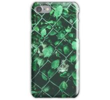 The Day I Watched Myself across the Fence iPhone Case/Skin