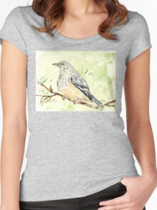 Olive Thrush (Turdus olivaceus) Women's Fitted Scoop T-Shirt