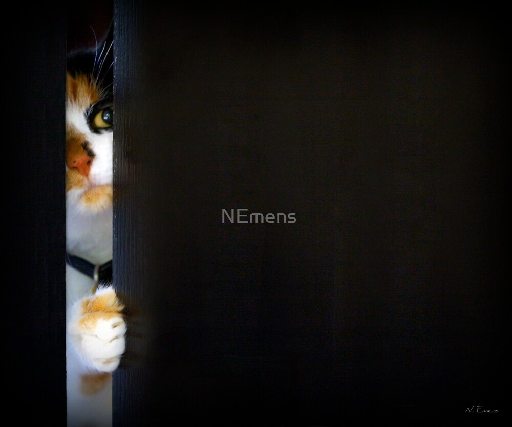 sneaky by NEmens