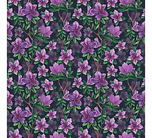 A watercolor seamless pattern of pink rhododendron flowers, branches of green leaves Photographic Print
