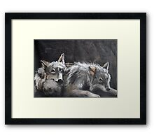 Dire Summer  Framed Print