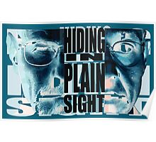 Hiding in Plain Sight - Breaking Bad Poster