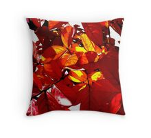 Lagerstroemia indica Throw Pillow