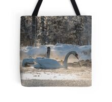 white swans on the frozen lake  Tote Bag