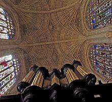 King's Interior 100 by Priscilla Turner