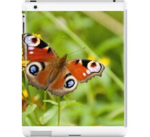 butterfly on a natural background iPad Case/Skin