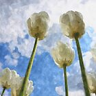 White tulips and cloudy sky digital watercolor by Natalia Bykova