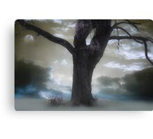 Twilight Song Canvas Print