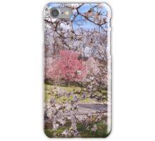 Dogwood Screen iPhone Case/Skin