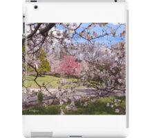 Dogwood Screen iPad Case/Skin