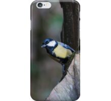 Great Tit bird sitting in a tree iPhone Case/Skin