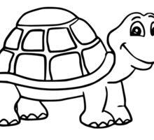 Turtle Park Sticker
