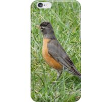 Hunting worms iPhone Case/Skin