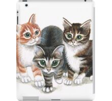 tabby kittens iPad Case/Skin