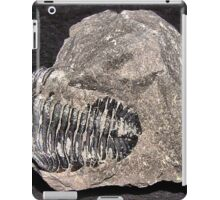 BW40 iPad Case/Skin