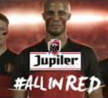 Red Devils Sticker