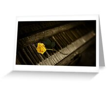 yellow rose on piano Greeting Card