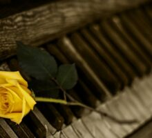 yellow rose on piano Sticker