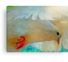 On the Wings of a Snow-White Dove  (All Proceeds Donated to Cancer Research) Canvas Print