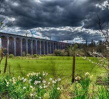 Digswell Viaduct by Nigel Bangert