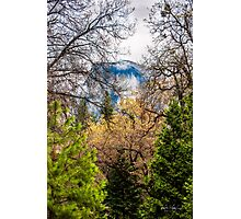 Half Dome in the Spring Photographic Print